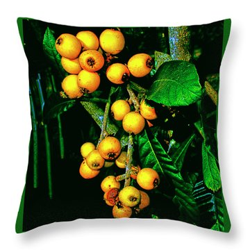 Ripe Loquats Throw Pillow
