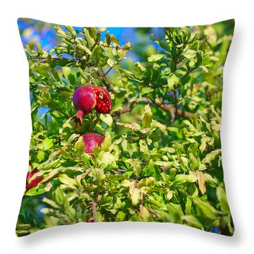 Ripe Pomegranate On The Tree In Jerusalem During Sukkoth Throw Pillow