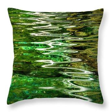 Ripple Paintings Throw Pillow