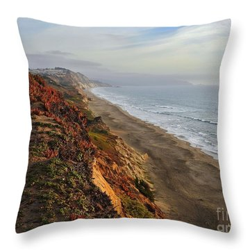 Rippled By Wind And Water Throw Pillow by Scott Cameron