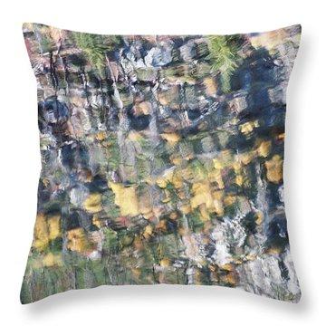 Rippled Reflection Throw Pillow by Frank Larkin