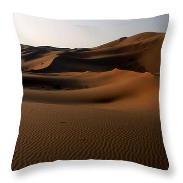 Ripples In The Sand Throw Pillow by Ralph A  Ledergerber-Photography
