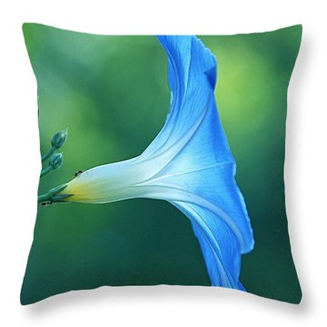 Throw Pillow featuring the photograph Rise And Shine by Byron Varvarigos