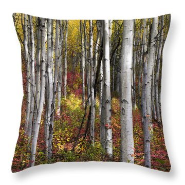 Riser Throw Pillow