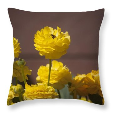 Rising Above The Crowd Throw Pillow