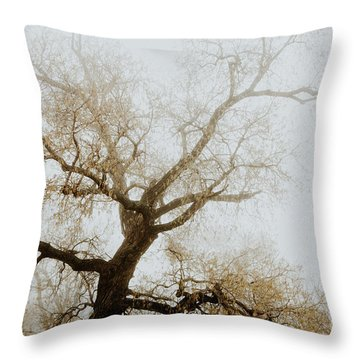 Throw Pillow featuring the photograph Rising by Iris Greenwell