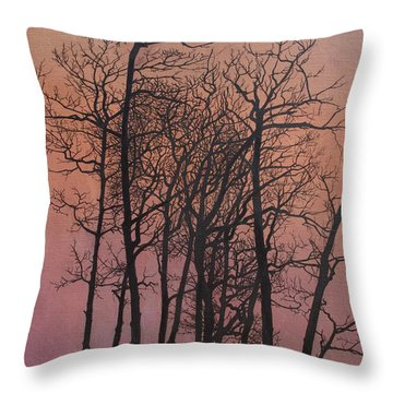 Rising Of The Moon  Throw Pillow by Barbara Barber
