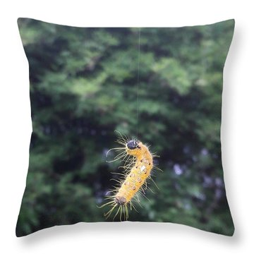 Rising To Rebirth Throw Pillow