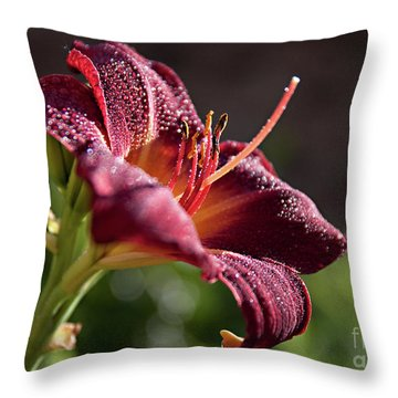 Rising To The Sun Throw Pillow