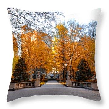 Rittenhouse Square Throw Pillows