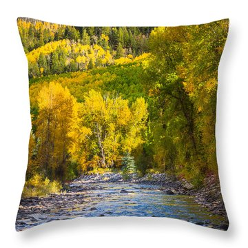 River And Aspens Throw Pillow by Inge Johnsson