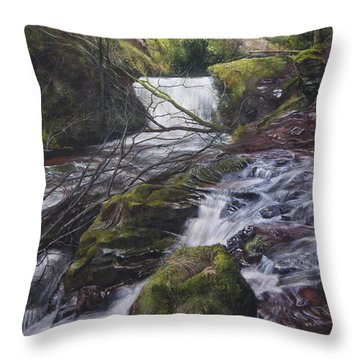 River At Talybont On Usk In The Brecon Beacons Throw Pillow by Harry Robertson