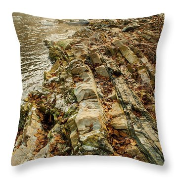 Throw Pillow featuring the photograph River Bank by Iris Greenwell