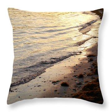 River Beach Throw Pillow