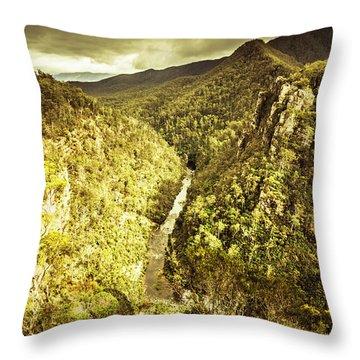 River Below Throw Pillow