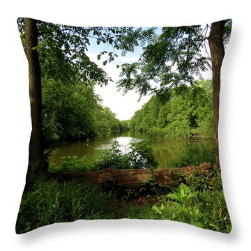 Throw Pillow featuring the photograph River Bend Seating by Kimberly Mackowski