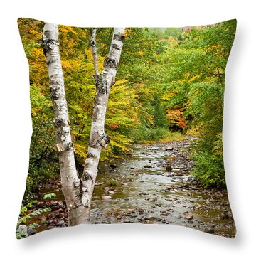 River Birch Throw Pillow