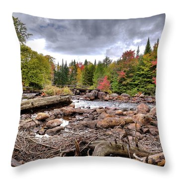 Throw Pillow featuring the photograph River Debris At Indian Rapids by David Patterson