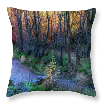 Throw Pillow featuring the photograph River Devon In Clackmannan by Jeremy Lavender Photography