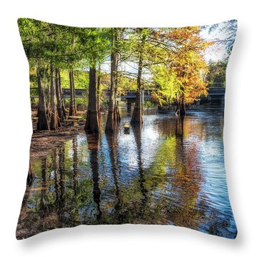 River Eeriness Throw Pillow