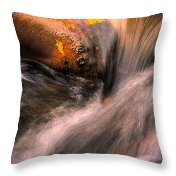 River Flow, Zion National Park Throw Pillow