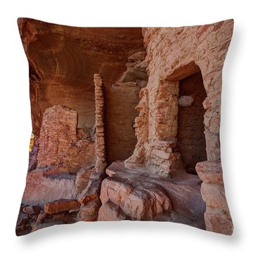 River House Ruin Throw Pillow