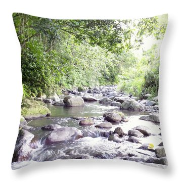 River In Adjuntas Throw Pillow