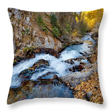 River In Autumn Throw Pillow