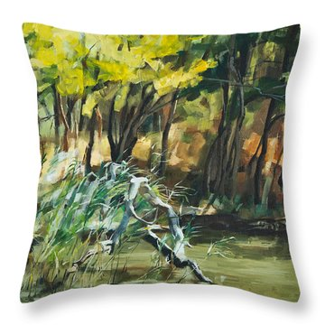 River In Summer Throw Pillow