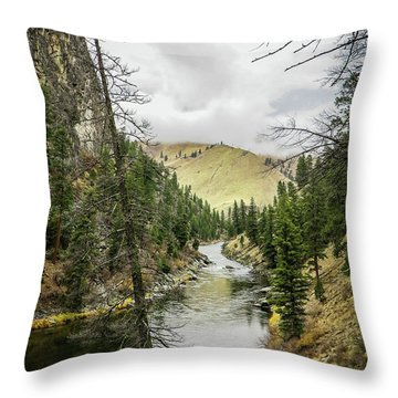 River In The Canyon Throw Pillow