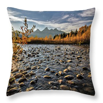 River In The Tetons Throw Pillow