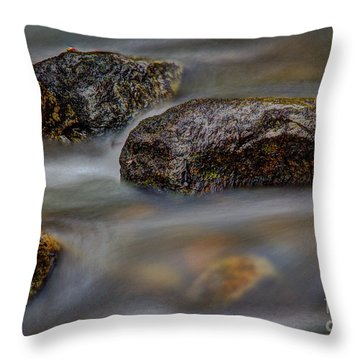 Throw Pillow featuring the photograph River Magic 2 by Douglas Stucky