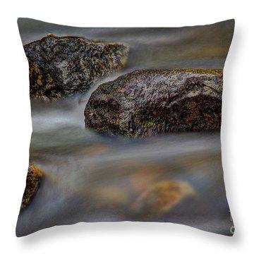River Magic 2 Throw Pillow by Douglas Stucky