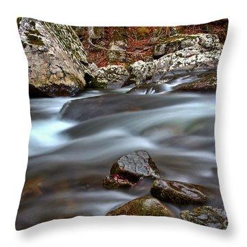River Magic Throw Pillow by Douglas Stucky