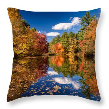 River Mirage Throw Pillow