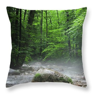 River Mist Throw Pillow