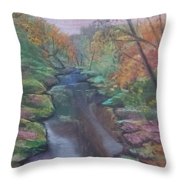 River In The Fall Throw Pillow