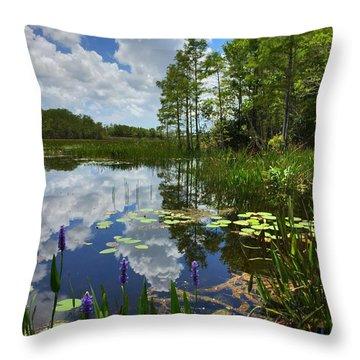 River Of Calm Throw Pillow