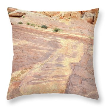 Throw Pillow featuring the photograph River Of Color In Valley Of Fire by Ray Mathis