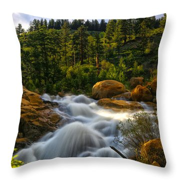 River Of Dreams Throw Pillow