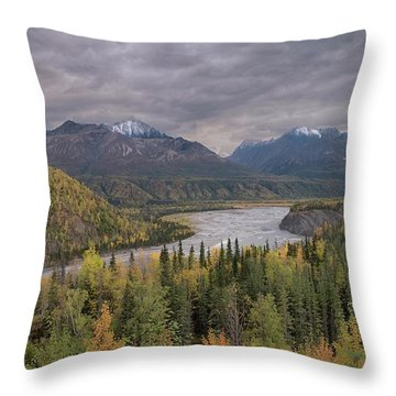 River Of Gold Throw Pillow