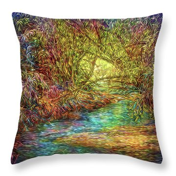 River Peace Remembering Throw Pillow by Joel Bruce Wallach