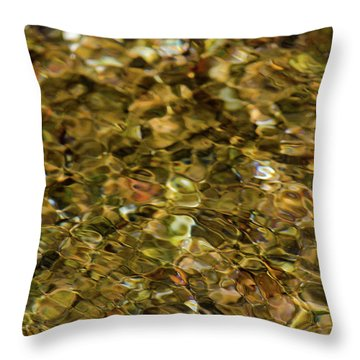 River Pebbles Throw Pillow