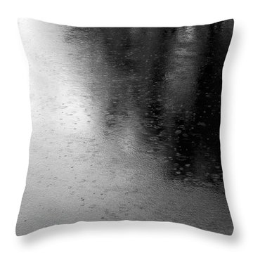 River Rain  Naperville Illinois Throw Pillow