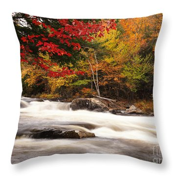 River Rapids Fall Nature Scenery Throw Pillow by Oleksiy Maksymenko