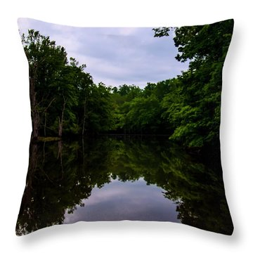 Throw Pillow featuring the digital art River Reflections by Chris Flees