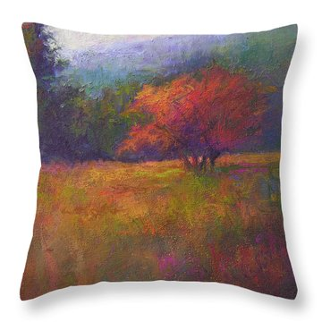 River Road Above New Hope Throw Pillow by Susan Williamson
