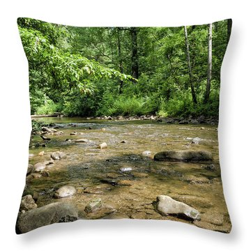 River Rock Shine  Throw Pillow