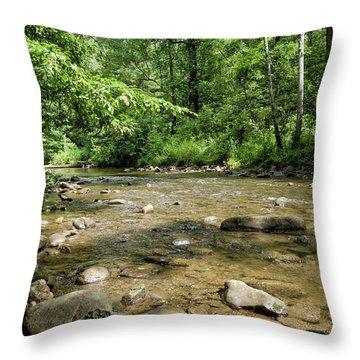 River Rock Shine  Throw Pillow