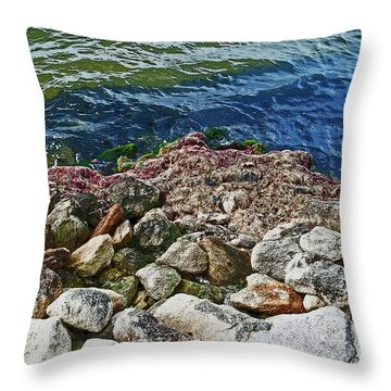 River Rocks Throw Pillow